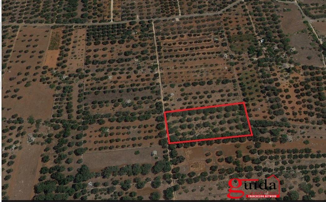 Terreno Edificabile Residenziale in vendita a Sannicola, 9999 locali, prezzo € 27.000 | CambioCasa.it