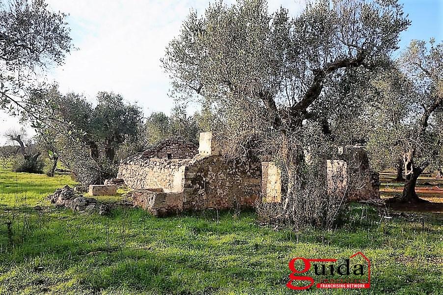 Terreno Edificabile Residenziale in Vendita a Casarano