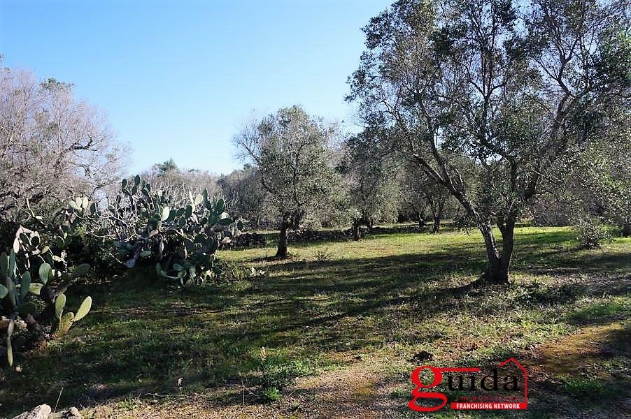 Terreno Edificabile Residenziale in vendita a Neviano, 9999 locali, prezzo € 10.000 | CambioCasa.it