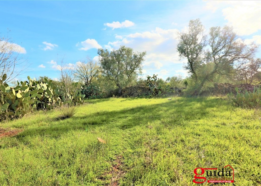 For Sale Agricultural land Matino - Land-of-7000-Sq-in-buy-in-zone-overview-a-Matino-Salento-TA02 Locality