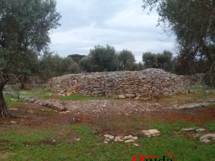 Land-agriculture-for-sale-in-Casarano-with-ruin-and-trees-of-olive