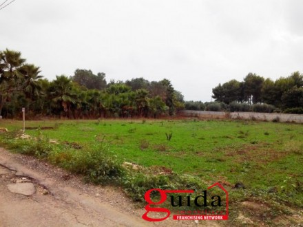Land-agriculture-for-sale-in-Matino-in-area-device-little-away-from-center-town