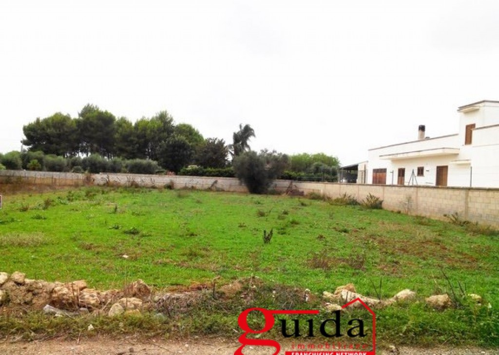 Sale Agricultural land Matino -  Land-agriculture-for-sale-in-Matino-in-area-device-little-away-from-center-town Locality
