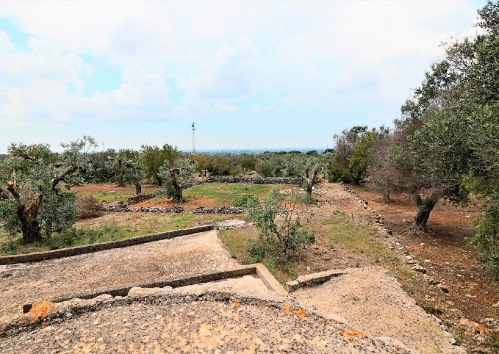 Sale Agricultural land with ruin or casotto  Parabita - Agricultural land for sale in Parabita with typical Salentine construction Locality