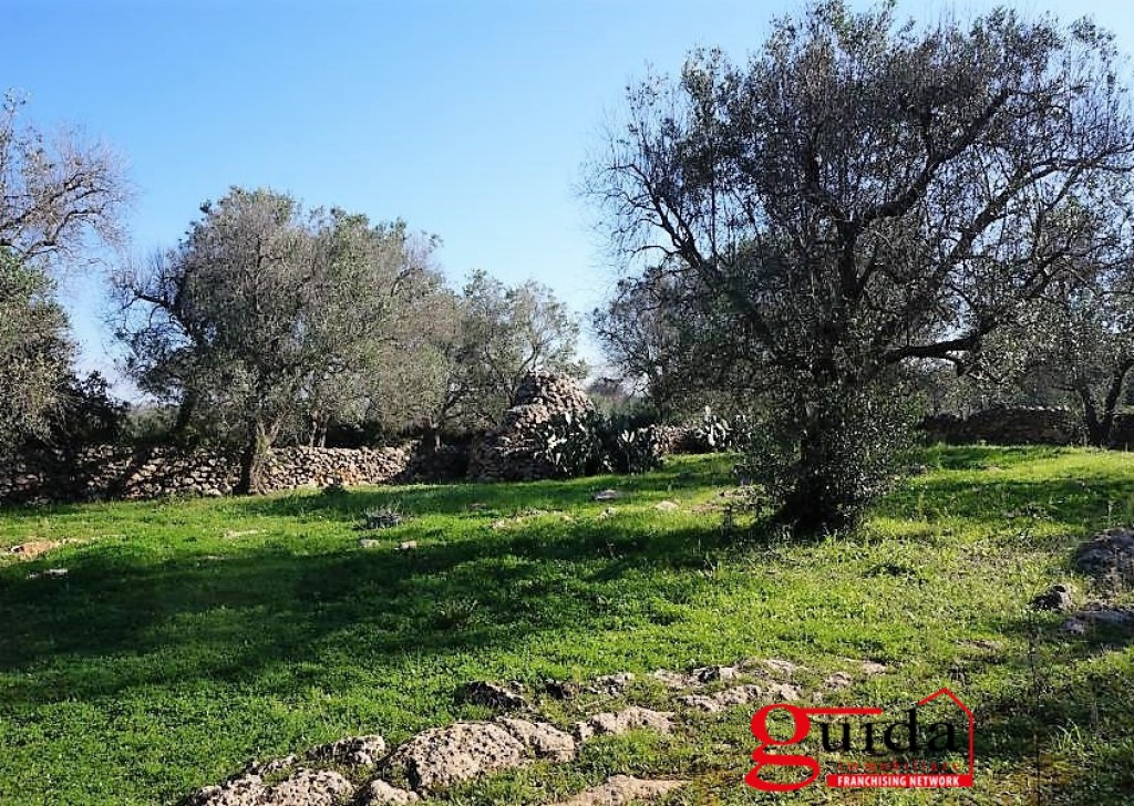 Sale Agricultural land Neviano -  Land-agriculture-for-sale-in-Neviano-with-ruin-and-all'allaccio-to-net-water Locality
