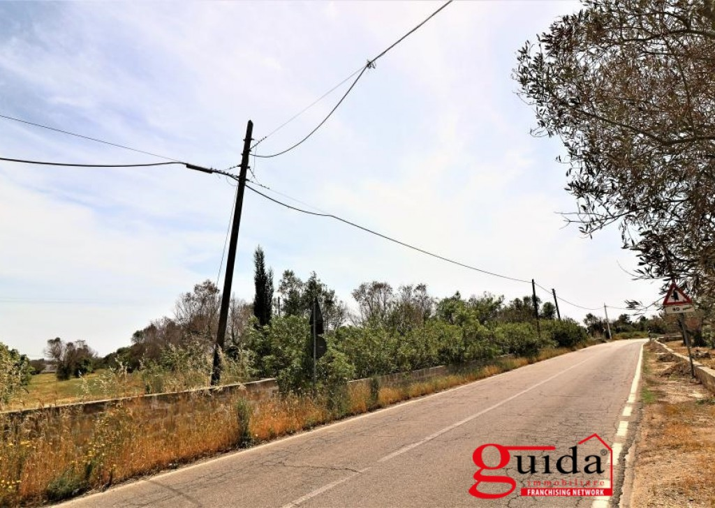 Sale Building land Matino - Land-plot-cheap-to-buy-a-Matino-a-5-km-by-beaches-of-Gallipoli Locality