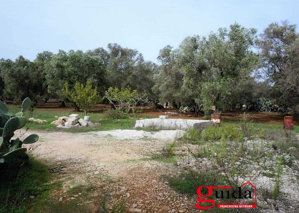 For Sale Land with planning permission  Sannicola - Land for sale with planning permission to build a house in Sannicola a few km from the sea Locality