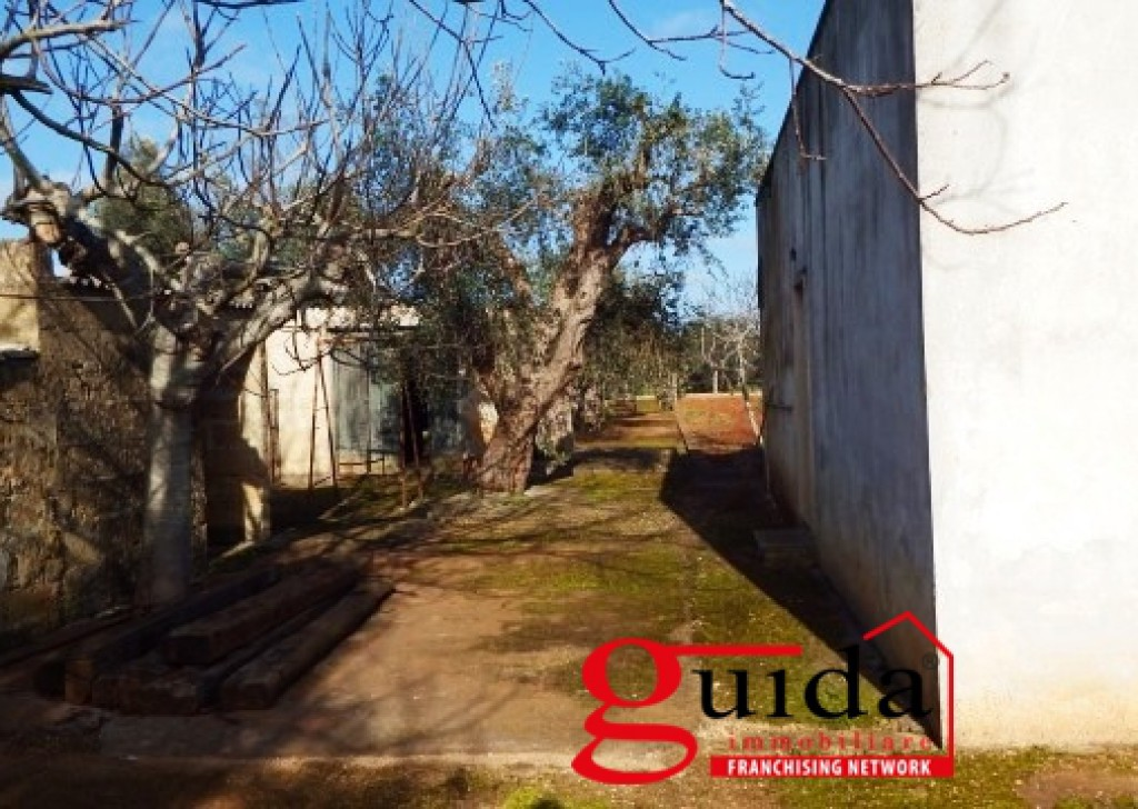 Sale Chalet Ugento -  House-in-campaign-in-sales-to-Ugento-and-little-away-from-center-town-of-Casarano Locality
